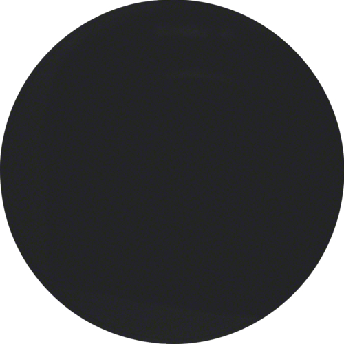 Picture of R.1 Black from Swtch