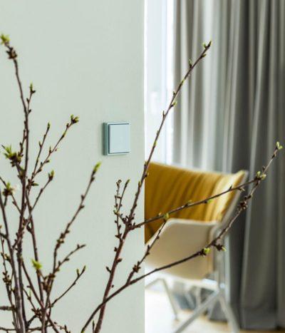 Jung Les Couleurs Vert Anglais light switch on wall